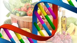 mydnamap-nutrigenetica